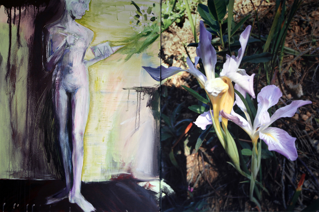 Wild Iris With Artist - Mixed Media